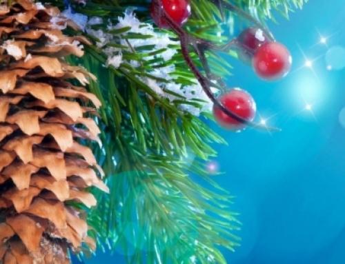 Поздравляем с наступившим 2019 годом и Рождеством!